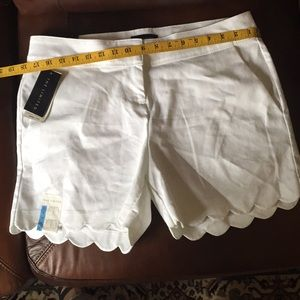 The Limited Scalloped Tailored  shorts (size 10)